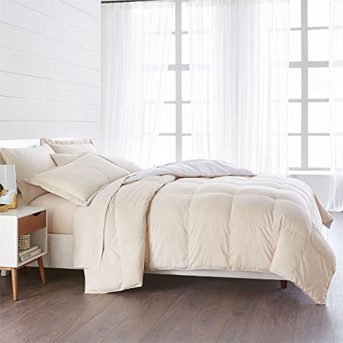 BrylaneHome Studio Reversible Baffle Box Comforter (Oatmeal White,Queen)
