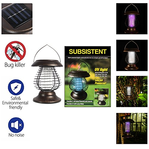 Outdoor Insect Killer Lamp in Florida - 8