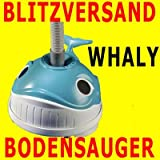 Hayward-Bodensauger-Whaly