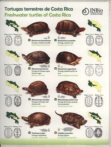 Tortugas Terrestres/Marinas de Costa Rica = Freshwater/Marine Turtles of Costa Rica