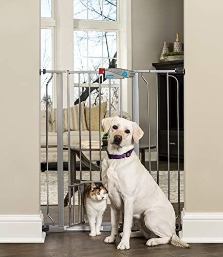 Carlson Extra Tall Walk Through Pet Gate with Small Pet Door, Includes 4-Inch Extension Kit, 4 Pack Pressure Mount Kit and 4 Pack Wall Mount Kit, Platinum (Carlson Extra Wide Gate With Small Pet Door)