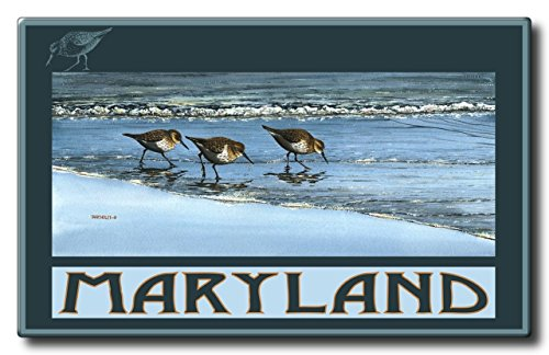 Maryland Breakfast At Beach Aluminum HD Metal Wall Art by Artist Dave Bartholet (22.5 x 36 inch) Art Print for Bedroom, Living Room, Kitchen, Family and Dorm Room Wall - At Arches Deer Park