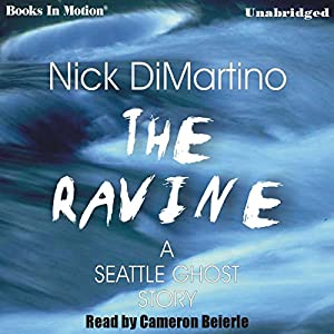 The Ravine Audiobook