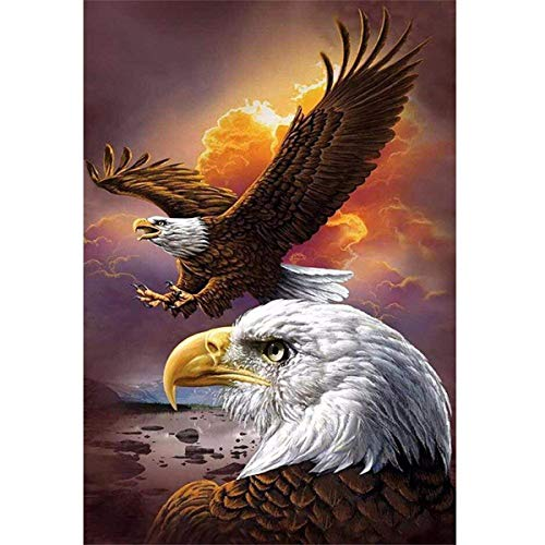 (DIY 5D Diamond Painting by Number Kit, Full Drill Dusk Eagles Animal Embroidery Cross Stitch Rhinestone Pictures Arts Craft Home Wall Decor 11.8x15.8 inch)