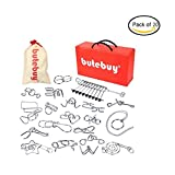 LOOBANI Assorted Brain Teasers Metal Wire IQ Puzzles with Plastic Box Package Great Educational Intelligence Toys for Adult Children and Student Expanding Mind 1 Set 20Pcs