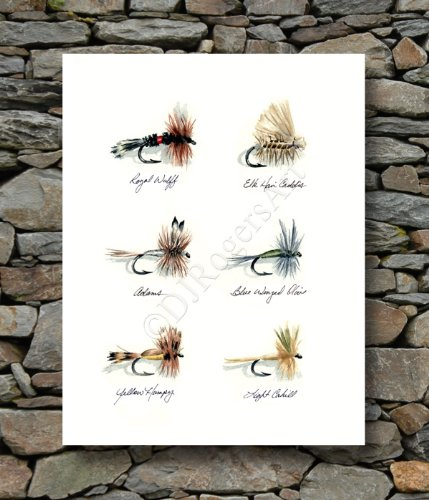 Fly Fishing Trout Prints - Trout Flies Fly Fishing Dry Fly Art Print by Watercolor Artist DJ Ro.