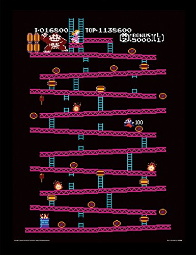 c8dd22f226f Donkey Kong NES Framed 30 x 40 Official Print - Overall Size  36 x 46 cm  (14 x 18 inches) Print Size  30 x 40 cm  Amazon.ca  Home   Kitchen
