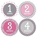 Months in Motion 295 Monthly Baby Stickers Milestone Age Sticker Photo Prop Newborn Girl Pink