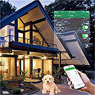 Xenon Wifi Wall Switch Crystal Tempered Glass Smart Touch Panel Wall Light Switch,1 Gang with Wireless Remote Control US Standard,Compatible with Alexa and Google Assistant