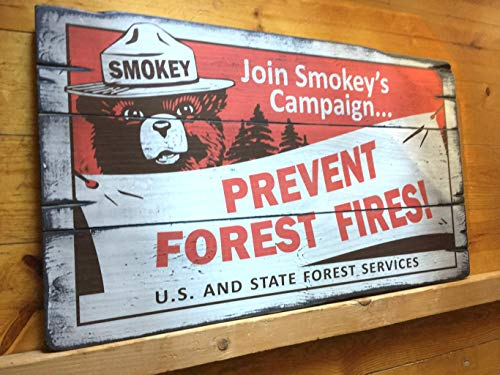 bawansign Smokey Bear Prevent Forest Fires Handcrafted Rustic Wood Sign National State Parks Mountain Decor for Home and Cabin