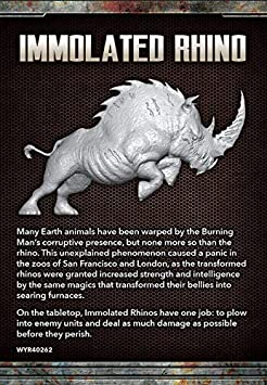 Amazoncom The Other Side Burning Man Immolated Rhino Toys Games