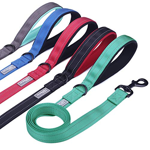 Vivaglory Padded Handle Dog Leash, Heavy Duty 4ft Long Reflective Nylon Training Leash Walking Lead for Medium to Large Dogs, Green