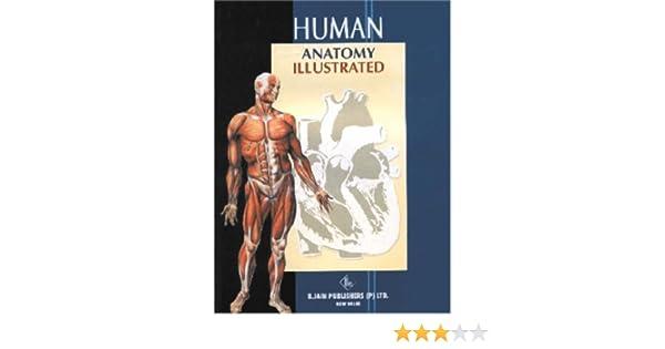 Human Anatomy Illustrated 9788180561795 Medicine Health Science