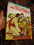 Read-N-Grow Picture Bible: Adventure from Creation to Revelation in 1,872 Realistic Pictures / Jimmy Swaggart Ministries by Libby Weed (2016-08-02)