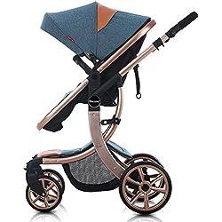 Blue Strollers