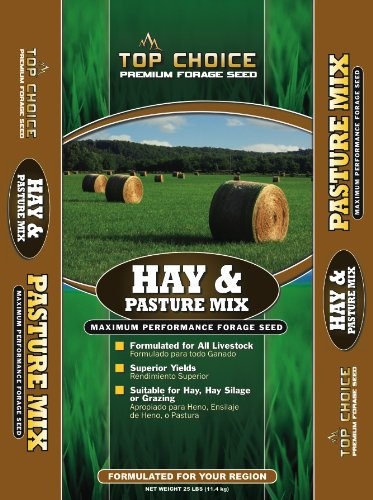 - Top Choice 17646 Hay and Pasture Grass Seed Mixture, 25-Pound