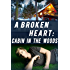 A Broken Heart: Cabin in the Woods: Book 1