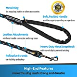 PETTRIS Strong Chew Proof Rope Dog Leash 6 ft - Reflective 100% Nylon Mountain Climbing Rope with Heavy Duty Snap Hook and Padded Handle - Best for Puppy Training & Walking Medium to Large Breeds
