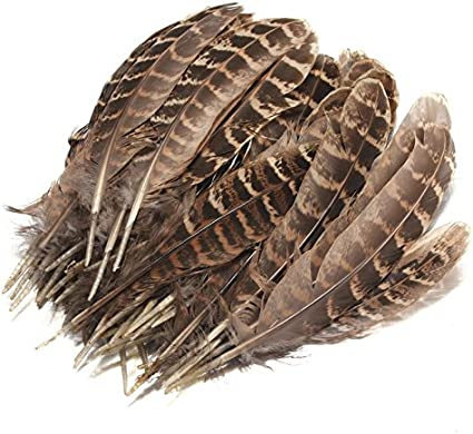 50pcs 10-15cm Natural Feather Hen Pheasant Tail Feathers DIY Craft Material Deco