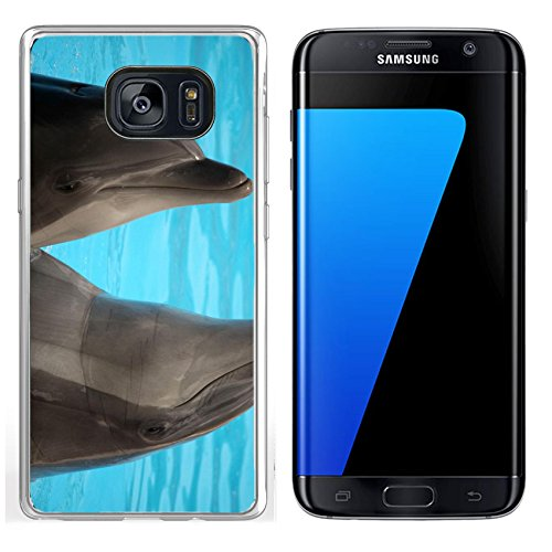 MSD Samsung Galaxy S7 Edge Clear case Soft TPU Rubber Silicone Bumper Snap Cases IMAGE ID 19721954 Dolphins dancing in water during show in Loro Parque in Tenerife Spain