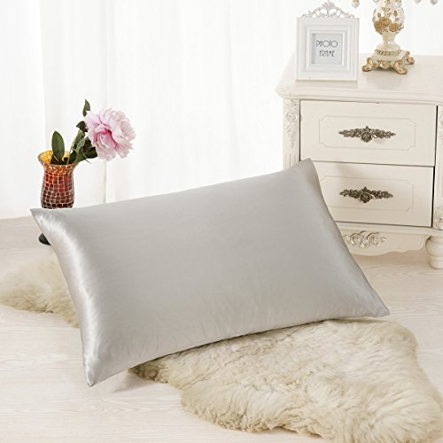 ALASKA BEAR - Natural Silk Pillowcase, Hypoallergenic, 19 momme, 600 thread count 100 percent Mulberry Silk, Standard Size with hidden zipper(1, Silver Gray)