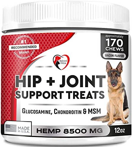 Glucosamine Chondroitin Soft Chews for Dogs with MSM: Advanced Natural Hip and Joint Support. Arthritis and Pain Relief. Skin and Coat and Bone Health with Hemp. Chewable Treats. Made in USA. 170 Ct