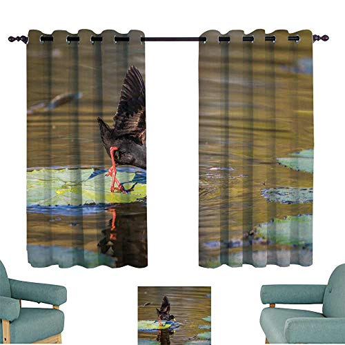 WinfreyDecor Printed Curtain Black Crake in Kruger National