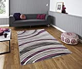 All New Modern Contemporary Stripes Carved Design Area Rug Embassy Collection by Rug Deal Plus (6' x 9', Grey/Purple)