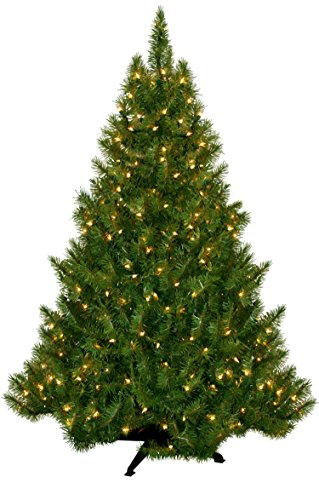 Putting Up Christmas Lights On Outdoor Tree