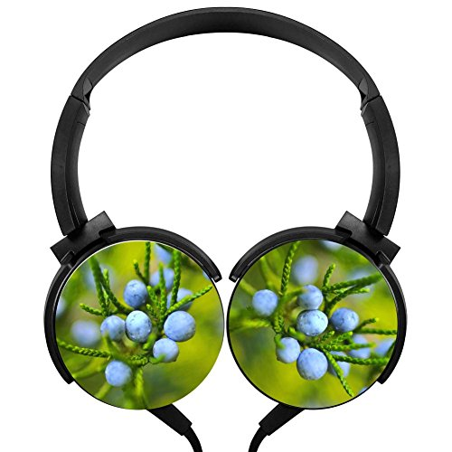 Blue Berry Tree Over-ear Noise cancelling 3D Printed Lightweight Headphone