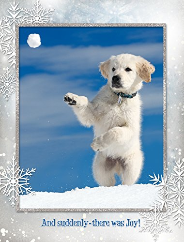 (Yukon's Joyful Day Christmas Cards)