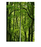 Custom Dream Amazing Beautiful Fresh Green Forest Window Door Cover Curtain, Home Decoration Cotton and linen Hanging Curtain Size 85x120 CM