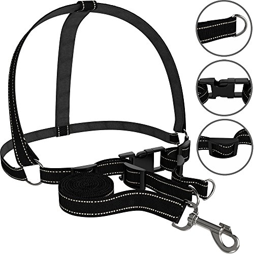Dog Harness Free Leash Included Heavy Duty