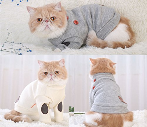 PDFGO Ropa Para Mascotas Artículos Para Mascotas Ropa Para Gatos Ropa Para Perros Otoño E Invierno De Dos Piernas,Beige-XL: Amazon.es: Ropa y accesorios