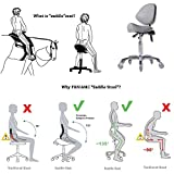 FRNIAMC Adjustable Saddle Stool Chairs with Back