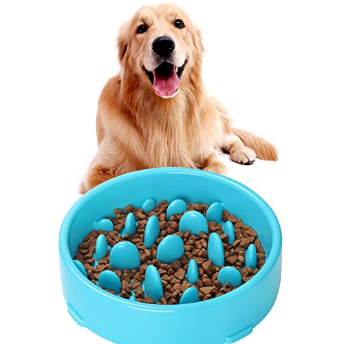 JASGOOD Bloat Stop Dog Puzzle Bowl Maze, Dog Food Water Bowl Pet Interactive Fun Feeder Slow Bowl SkidStop Design Blue Color
