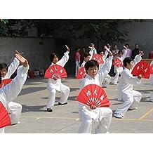 New Brand / 2 Pcs Chinese Language Kungfu Fan Tai Chi Fan Kung Fu Fan Tai Chi Fan Kung Fu Tai Chi Fan Fan Bamboo Supplies Martial Arts Supplies