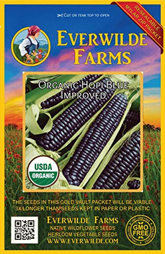 Hopi Blue Corn - Everwilde Farms - 50 organic Hopi Blue Improved Ornamental Corn Seeds - Gold Vault Packet
