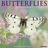 Butterflies of North America 2018 Calendar