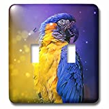 3dRose Sven Herkenrath Animal - Photograph Of A Colorful Parrot On Purple And Yellow Background - Light Switch Covers - double toggle switch (lsp_286409_2)