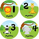 Little LillyBug Designs - Monthly Baby Stickers - Neutral - Zoo Animals