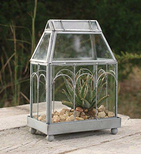 Archway-Glass-Terrarium