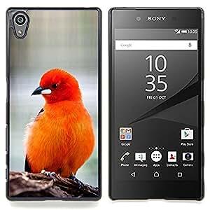 /Skull Market/ - Bird Feathers Orange Red Furry Beak For Sony Xperia Z5 5.2 Inch Smartphone - Mano cubierta de la caja pintada de encargo de lujo -