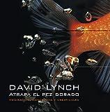 Atrapa el pez dorado/ Catching The Big Fish: Meditacion, conciencia y creatividad/ Meditation, Awareness and Creativity (Spanish Edition) Livre Pdf/ePub eBook