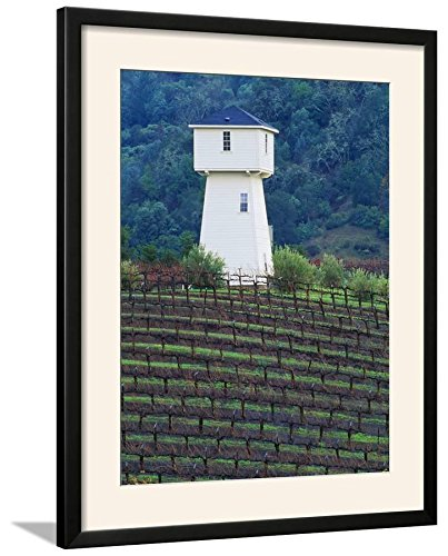 ArtEdge Silver Oak Cellars, Alexander Valley Wine Country, California Print, 25 x 31, Black Frame-White Mat -