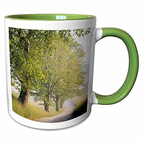 3dRose Danita Delimont - Adam Jones - Roads - USA, Tennessee, Great Smokey Mountains NP, Cades Cove, Hyatt Lane. - 11oz Two-Tone Green Mug - Cades Cove Smokey Mountains