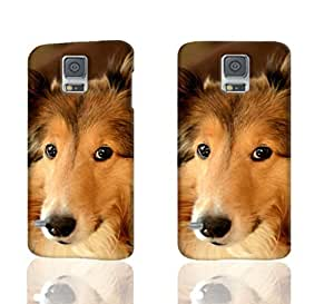 Rough Collie Pattern Image - Protective 3d Rough Case Cover - Hard Plastic 3D Case - For Samsung Galaxy S5 i9600