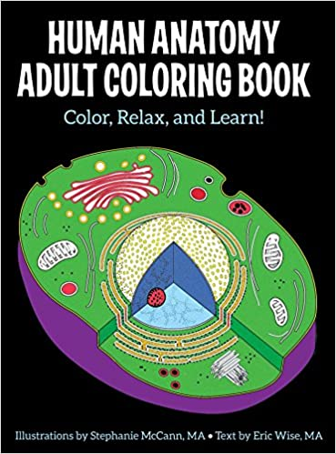 Amazon Human Anatomy Adult Coloring Book 9781506225586 Stephanie McCann Eric Wise Books