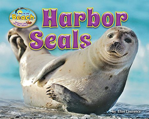 Harbor Seals (Day at the Beach: Animal Life on the Shore)