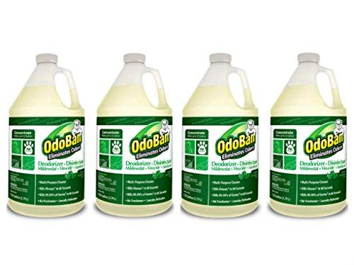 OdoBan 911062G4 Concentrated Odor Eliminator, Eucalyptus, 1gal Bottle (Case of 4) by OdoBan (Image #6)